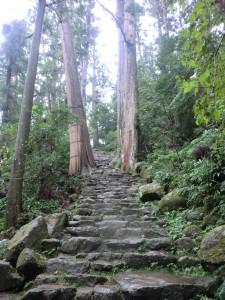 和歌山県那智勝浦町「熊野古道」