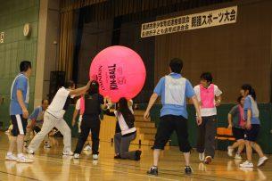 2013.7.13 親睦スポーツ大会(キンボール)