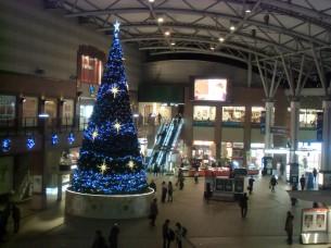 2013.11.21 JRかもめ広場の巨大ツリー